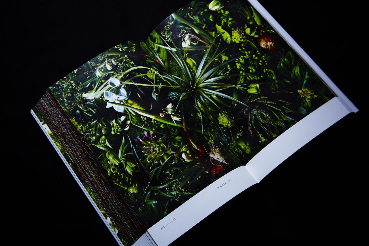 Encyclopedia of Flowers, Lars Müller Publishers (2012)