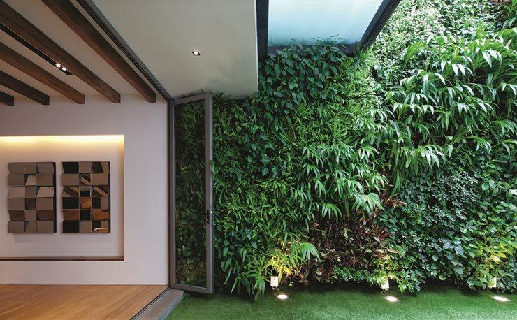 Quieres tener menos estr s pon plantas en casa - Humedad relativa en casa ...
