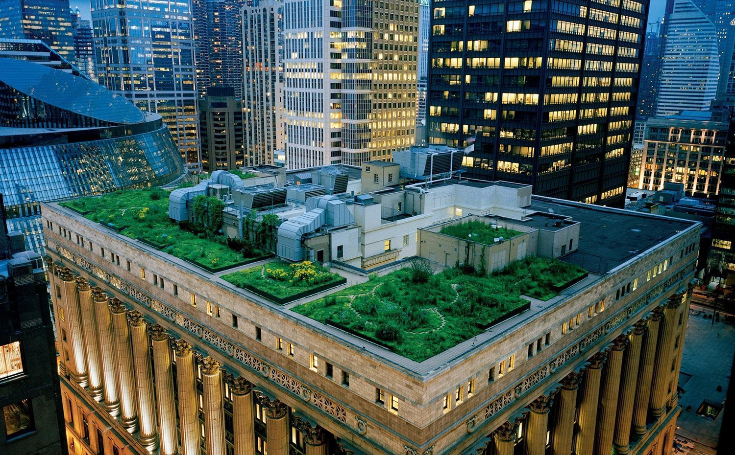 chicago-illinois-usa-green-roof-city-hall. Cubierta vegetal del ayuntamiento de Chicago, de la firma Conservation Design Forum en colaboración con el arquitecto William McDonough