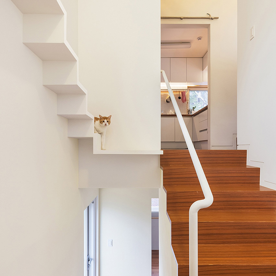 house-in-seoul-obba-house-architecture-for-cats dezeen 1704 col 4. [03] Un loft para gatos