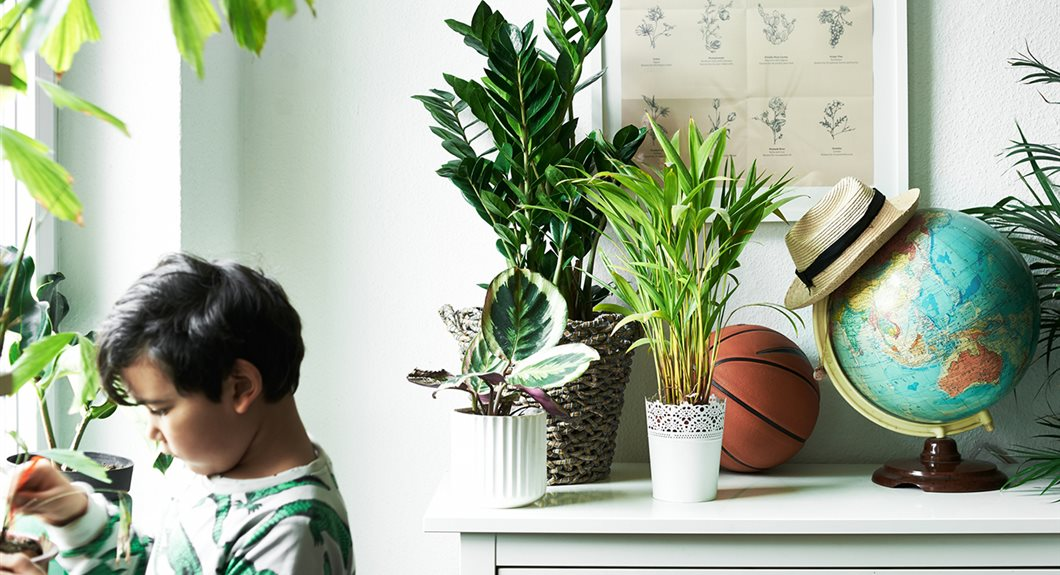 Ikea-show-kids-how-fun-it-is-to-grow-plants-at-home1364318662560-s5_49d6abc8_1060x575