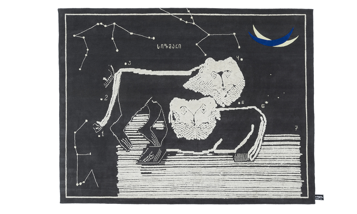 Lions at Night, diseño de Rooms Studio para CC-Tapis