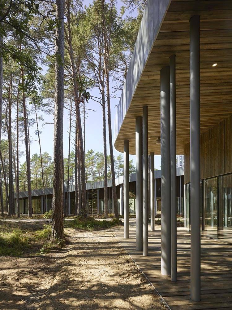 Un filtro de delgadas columnas circulares que se funde con los pinos circundantes.