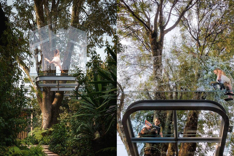 Cabaña en el árbol, por Gerardo Broissin