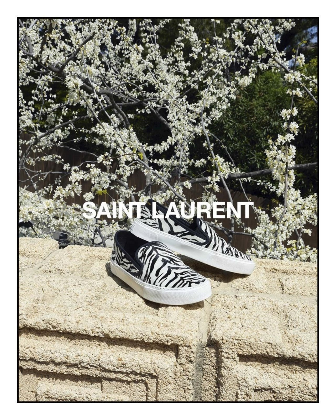 Zapatillas de Saint Laurent by Anthony Vaccarello: Winter 19 Collection