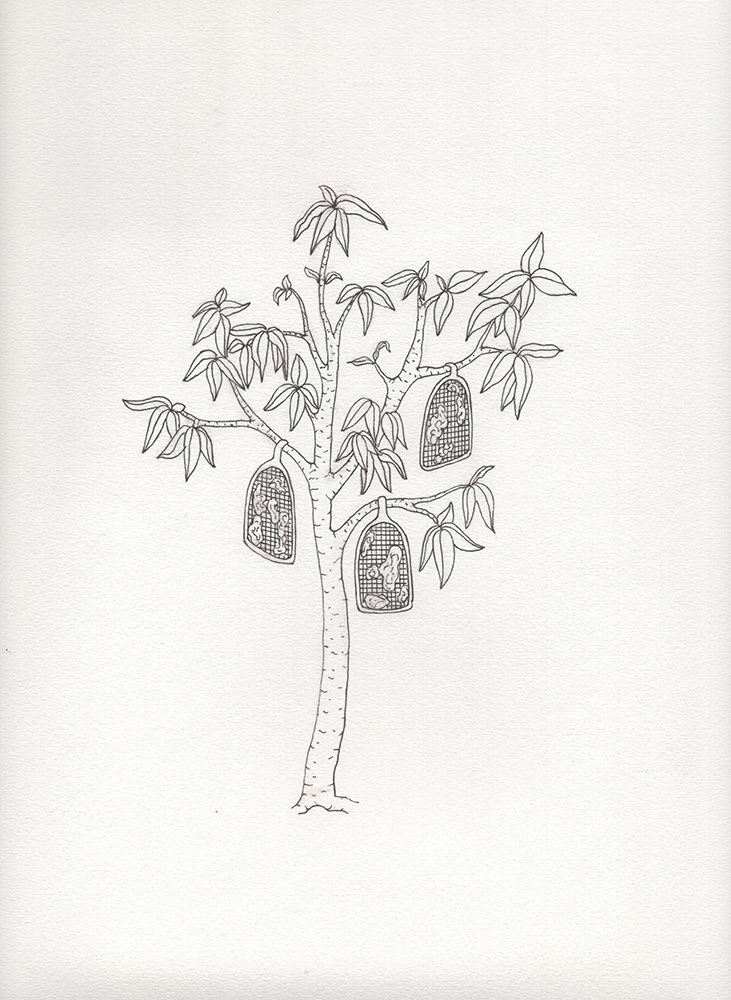 design miami FormaFantasma Botanica Farm (set of five) A4 hand drawing $3,000